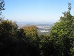 Rheinebene 1